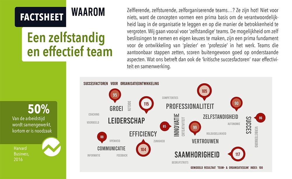 teamscan succesfactoren factsheet werkoverleg